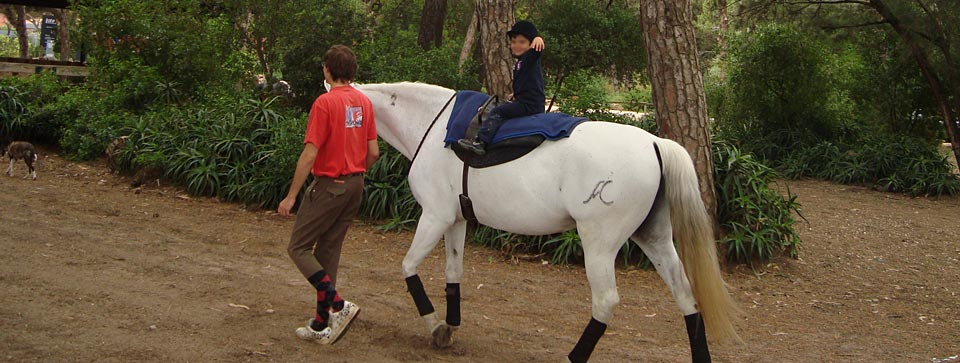 Summer School – Horse Riding Lesson